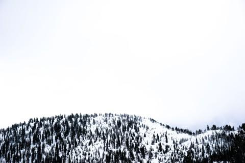 tahoe-4