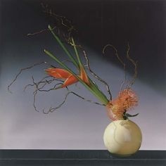 95d6b2a8272251eb58d58a964d1660b9--robert-mapplethorpe-flower-arrangements